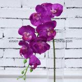 8 цветков орхидеи Phalaenopsis головок малых Silk