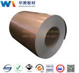 Alta qualidade Prepainted de aço