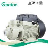Pompe à eau périphérique domestique électrique à laiton pour lavage de voitures