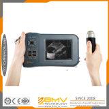 Farmscan M50 Chine célèbre marque numérique complète Portable B / Scanner W Veterinary Ultrasound pour porc, mouton, chèvre