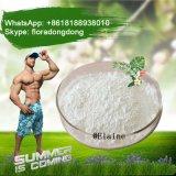 Provare il testoterone Enanthate degli steroidi di E a Bodybuilding il CAS 315-37-7