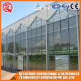 Аграрный гальванизированный Venlo парник поликарбоната стальной рамки