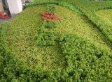 옥외 사용 인공적인 플랜트 벽 인공적인 녹색 벽