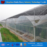 온실 Hidroponica 직업적인 제조자에서 플라스틱 아치 온실