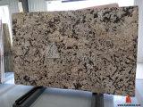De Plak van het Graniet van Delicatus van Crema voor De Decoratie van het Bouwmateriaal