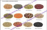 El chino de acero inoxidable especia granos de arroz sal Máquina esmeriladora Universal
