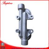 Motor Cummins (Nt855 K19 K38) El filtro de combustible de la cabeza (212013)