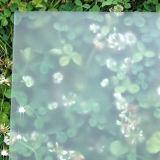 o ácido de 3-15mm gravou o vidro de vidro de vidro do vidro de /Frosted /Acid/geada