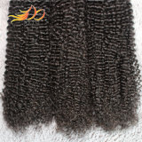 Capelli umani di Remy del Virgin del tessuto brasiliano dei capelli