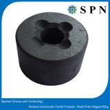 De ceramische Magneet van de Motor van het Ferriet Permanente Gesinterde
