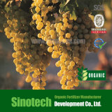 Humizone Fulvic 산 95% 잎 비료