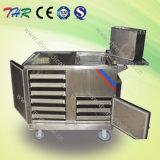 Elektrische Heizungs-Nahrungsmittelkarre (THR-FC002)