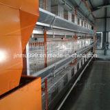 Schicht-Huhn-Geflügel-Geräten-Rahmen von China