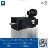 Novo Hengli Trifásico Motor AC variável de velocidade assíncrona