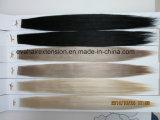 Estensioni dei capelli del nastro di Remy russe più di alta qualità