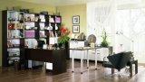 Muebles de sala de estudio, la Mesa de ordenador