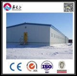 Профессиональный производитель стальных структуре склада (BYSS2016021507)