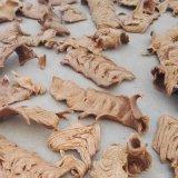 Lijn van de Verwerking van het Voedsel van het Weefsel van Jinan de Eiwit, de Vegetarische Machine van de Brokken van het Vlees