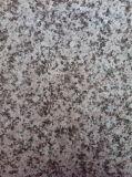 Granito branco (KTR-33)