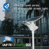 A instalação fácil 40W todo em produtos solares de uma lâmpada do jardim da luz de rua