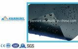 HDPE estándar Geomembrane del espesor de 1m m para el trazador de líneas de la charca de pescados