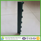Green Painted Heavy Duty T Post pour 2016 Hot Sale