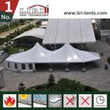 tente en aluminium de la crête 20X30 élevée avec les flancs clairs de guichet de PVC à vendre