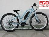 リチウム電池の脂肪質のタイヤの電気自転車が付いている新しいマウンテンバイク