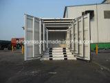 9FT de nieuwe Reeks van de Container