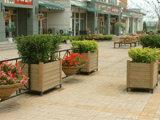 Le WPC Meubles de jardin matériau (1)
