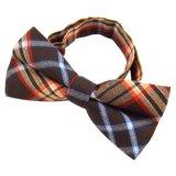 La bande colorée bon marché tissée de relation étroite de proue de Mens de polyester de mode Cintrer-Attachent (B001-)