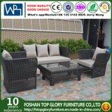 現代余暇の屋外の家具の藤の庭の柳細工のソファー(TG-7002)
