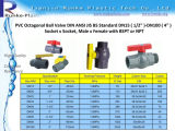 "PVC plastique irrigation Ball Valve (DN15 (1/2 "") -Dn100 (4""))"