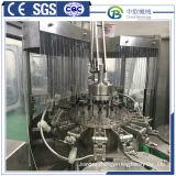 Haustier-Flaschen-reine Mineralwasser-füllende Produktions-Maschine beenden