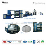La Chine usine fabricant extruder Fast Food Box feuille machine (TM105/120)