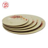 Plaque lustrée extérieure durable de vaisselle de mélamine d'articles de ménage de première pente