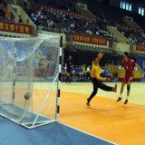 専門の屋内PVCハンドボールはフロアーリングを遊ばす