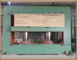 Il funzionamento freddo della macchina/legno della pressa del compensato dei piedi 4*8 idraulico precomprime la macchina per compensato