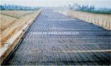 Le meilleur matériau de construction en plastique renforcé Road biaxes géogrille