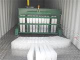 5-Ton/24 de Machine van het Ijs van het Blok van de Maker van het Ijs van U met Container met KoelToren