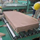 Lamiera di acciaio ondulata galvanizzata tetto dello strato dello zinco con il rapporto dello SGS
