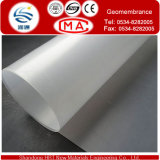 Trasparente e Various Color Membrane con HDPE Material