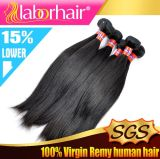 Commerce de gros non transformés vierge 100 % de la Malaysian hair extension Lbh 172