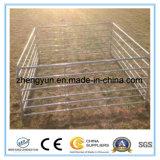 5ftx10FT täfeln amerikanisches rundes die Feder-Vieh-Panel/Viehbestand,/Pferden-Panel