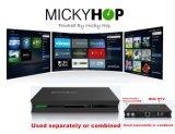 Ipremium I9 de 4K UHD Cuadro IPTV Android 6.0 de DVB-S2 T2/C Caja de transmisión de ISDB-T