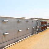 Moderne et Beautiful Light Steel Structure Poultry Chicken House Building