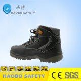 Стальную пластину Скалолазание Ce обувь на заводе