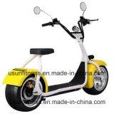 [سكوتر] كهربائيّة كهربائيّة درّاجة درّاجة ناريّة ودرّاجة ثلاثية [ن-8]