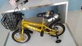 Este año Venta caliente y fresco Diseño seguro equilibrio niño bicicleta con asiento de seguridad / Precio barato Niño Balance Bike