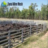 호주 표준 타원형 Rali Galvanzied 가축 위원회